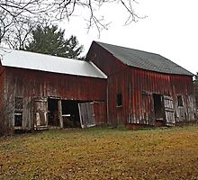 Old Red Barn by Gilda Axelrod