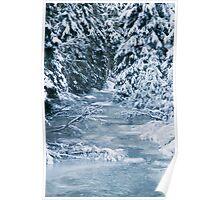Frozen World - Brook Poster