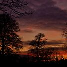 Winter sunset. by Finbarr Reilly
