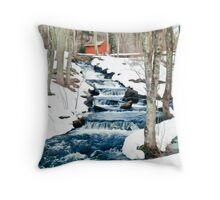 Waterfall cascading down snowy slope. New England winter scene Throw Pillow