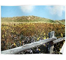 Fence with a View Poster