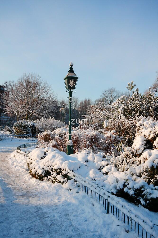 Garden in winter by zumi