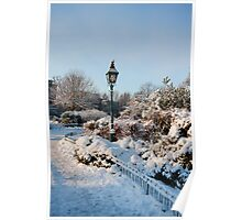 Garden in winter Poster