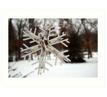 Snow Flake Art Print