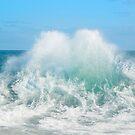 Indian Ocean 1 by Wendy  Slee