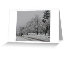 Winter on State St. Greeting Card