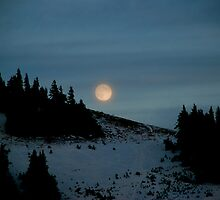 Moonrise in Winter by Octoman