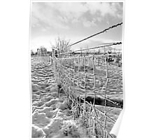 Fence Lines Poster