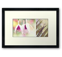 Softly Diptych Framed Print