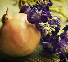 Pomegranate by Tia Allor-Bailey