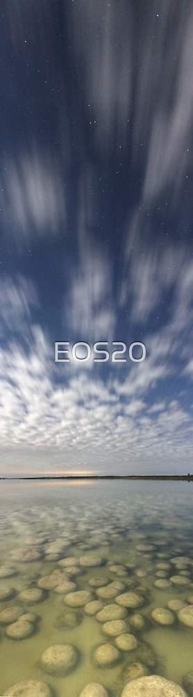 Lake Clifton Thrombolites  by EOS20