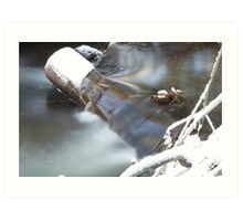 Waters Rush Art Print