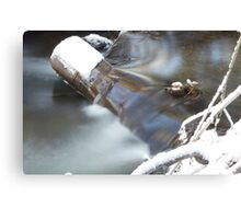 Waters Rush Canvas Print