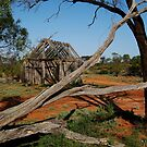 Historic Pastrol Relic, Dangalli Conservation Park by Joe Mortelliti