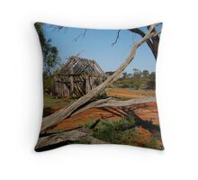 Historic Pastrol Relic, Dangalli Conservation Park Throw Pillow