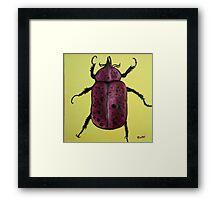 """Beedles - """"Ringo"""" Framed Print"""