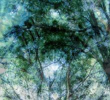 Ghosted, Abstracted Trees in Black and Green With Accents of Other Colors  by Ivana Redwine