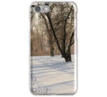 Winter in the Park iPhone Case/Skin