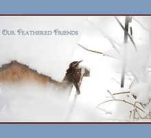 Feathered Friends by Trudy Wilkerson