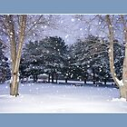 Early Morning Snow by Trudy Wilkerson