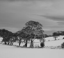 Dalmeny Winter Scene by Doug Cook