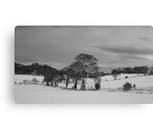 Dalmeny Winter Scene Canvas Print