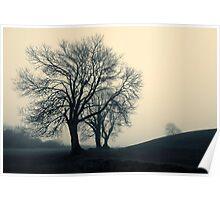 Navan Fort - misty tree Poster