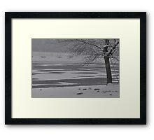 Frozen Lake Scene Framed Print