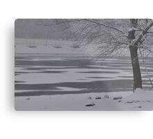 Frozen Lake Scene Metal Print