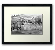 Two Moose Pair Off Framed Print