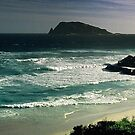 south-west coast of Western Australia by nadine henley