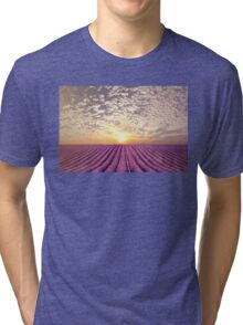 Sunset over a summer lavender field in Provence, France Tri-blend T-Shirt