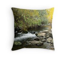 Small Waterfall in the Ogden River Throw Pillow