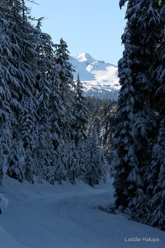 An Oregon Christmas by Laddie Halupa