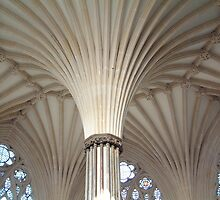 Chapterhouse Ceiling by Dave Godden