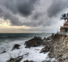 Nervi by oreundici