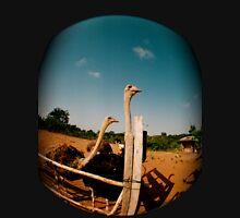 Ghanaian ostrich feeding Unisex T-Shirt