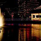Christmas Lights by Gregory Ballos   gregoryballosphoto.com