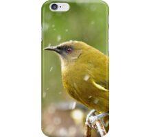 A Chilly Breeze - Bellbird NZ iPhone Case/Skin