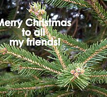 Merry Christmas to all my RedBubble Friends! by debbiedoda