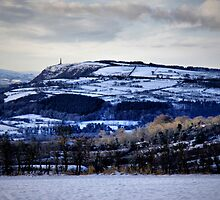 Snowy landscape by SNAPPYDAVE