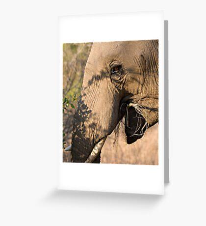 Elephant Brunch Greeting Card