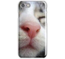 Cute kitten asleep with a pink nose iPhone Case/Skin