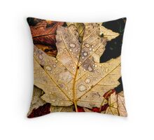 Leave splashed with water drops Throw Pillow