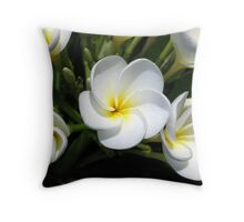 Young Frangipanis Throw Pillow