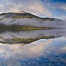Lake Kaniere 2 by Paul Mercer