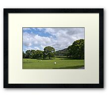 Sheep Grazing in the Lake District Framed Print