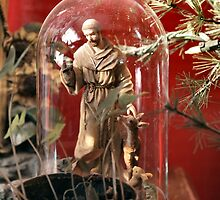 Saint Francis Assisi by Barb Miller