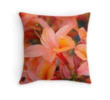 In The World of Fairies and Pixies Throw Pillow