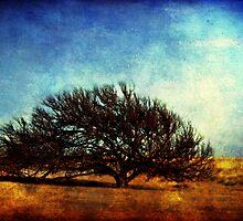 Ode to Autumn by Tia Allor-Bailey